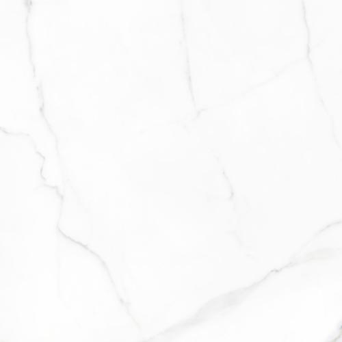 Happy Floors Statuario Matte Porcelain Tile - 24 x 24 in.