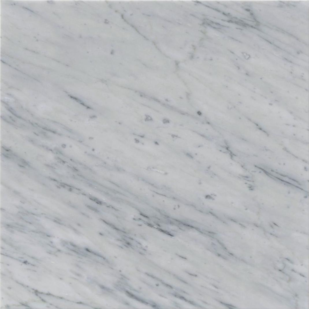 Italia F Carrara White Marble Matte Honed Tile - 18 x 18 in.
