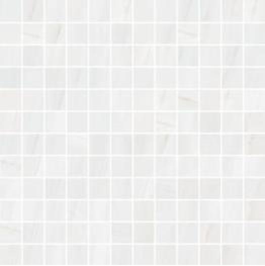 Dolomite White Natural:Polished 1 x 1 Mosaic